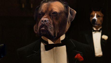 Chu cho lai xe tai khoi mao cuoc chien photoshop - Anh 9