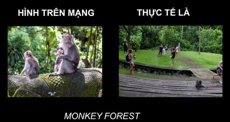 Anh thuc te 'khong nhu mo' o Bali - Anh 7