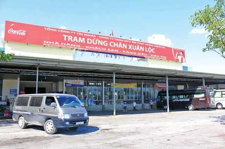 Nen nhan rong tram dung nghi tren quoc lo - Anh 1