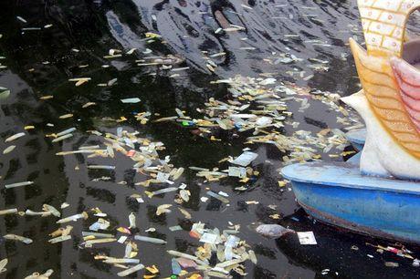 Ha Noi: Bao cao su noi trang ho Linh Dam - Anh 1