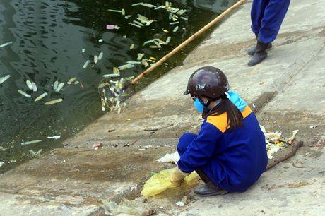 Ha Noi: Bao cao su noi trang ho Linh Dam - Anh 4