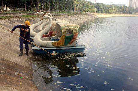 Ha Noi: Bao cao su noi trang ho Linh Dam - Anh 6