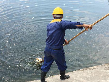 Ha Noi: Bao cao su noi trang ho Linh Dam - Anh 8