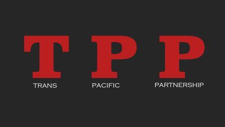 Nha Trang: My rut khoi TPP se dem lai loi ich cho Trung Quoc - Anh 1