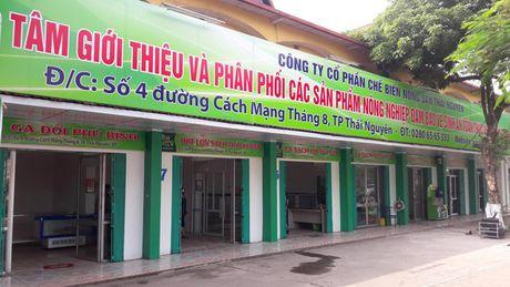 Thai Nguyen: Chu DN bi to hanh hung doan kiem tra thuc pham - Anh 1
