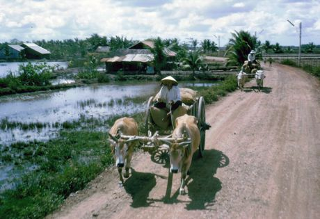 Anh doi thuong thu vi o Long An nam 1968 (2) - Anh 4