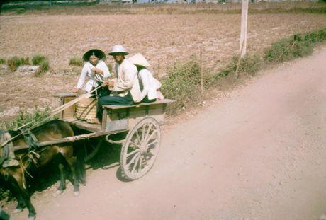 Anh doi thuong thu vi o Long An nam 1968 (2) - Anh 5