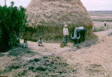 Anh doi thuong thu vi o Long An nam 1968 (2) - Anh 6