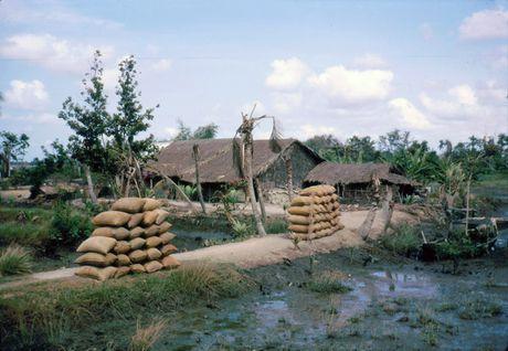 Anh doi thuong thu vi o Long An nam 1968 (2) - Anh 7
