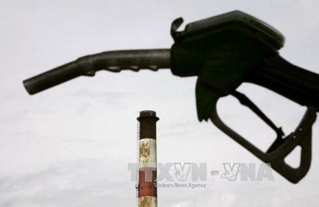 Neu OPEC cat giam san luong, gia dau co the dat 55 USD/thung - Anh 1