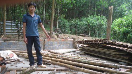 Thanh Hoa: Can tim huong di cho nguoi dan vung loi Vuon quoc gia Ben En - Anh 1