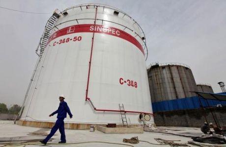 Gia dau tang muc ky luc truoc de xuat dong bang san luong cua OPEC - Anh 1