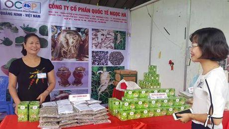250 gian hang tham gia hoi cho tai TP Cam Pha - Anh 3