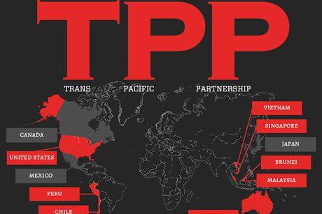 Nha Trang: Trung Quoc huong loi khi Donald Trump dung TPP - Anh 1
