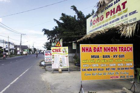 Co dat tung hoanh tai Nhon Trach - Anh 1