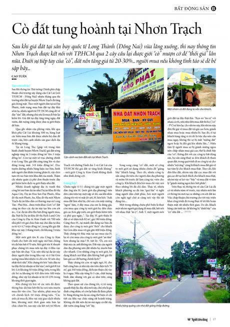 Co dat tung hoanh tai Nhon Trach - Anh 4