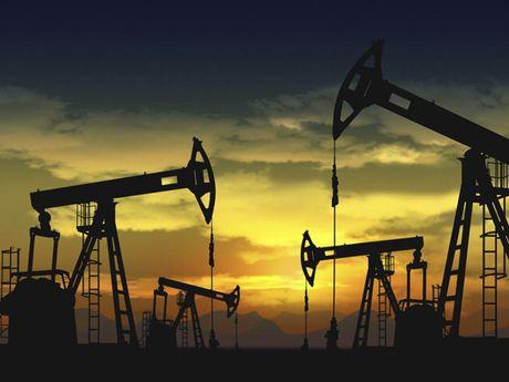 TT dau TG ngay 23/11: Gia di len do du doan cat giam san luong cua OPEC - Anh 1