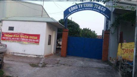 Sa thai Chu tich Cong doan co so trai phap luat - Anh 1
