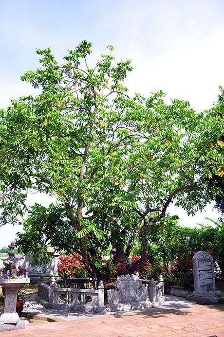 Den Tran Hung Dao va mieu Vua Ba – Diem du lich tam linh nhieu y nghia o Quang Ninh - Anh 2