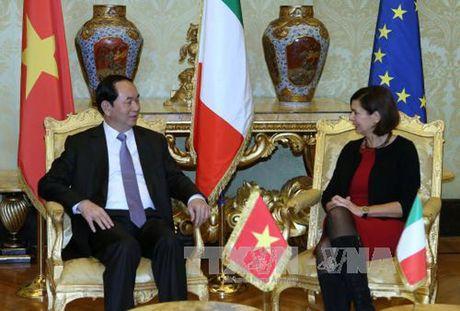 Hinh anh: Chuyen tham cua Chu tich nuoc Tran Dai Quang toi Italy - Anh 11