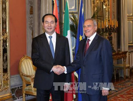 Hinh anh: Chuyen tham cua Chu tich nuoc Tran Dai Quang toi Italy - Anh 12