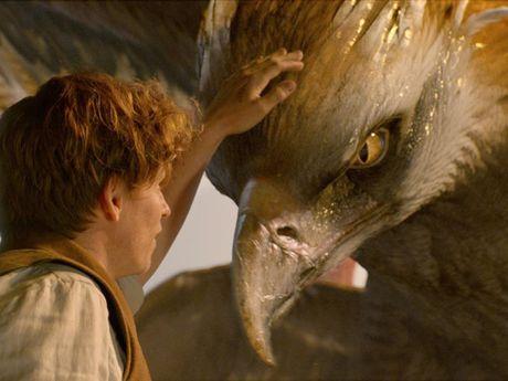 Nhung sinh vat huyen bi lam 'khuynh dao' the gioi cua Fantastic Beasts - Anh 3