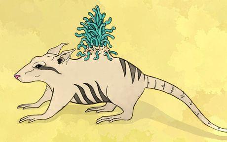 Nhung sinh vat huyen bi lam 'khuynh dao' the gioi cua Fantastic Beasts - Anh 9