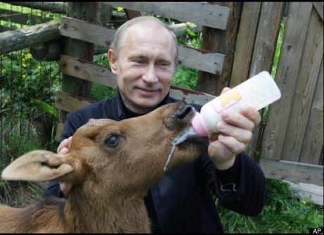 Nhung mon qua dac biet cua Putin - Anh 5