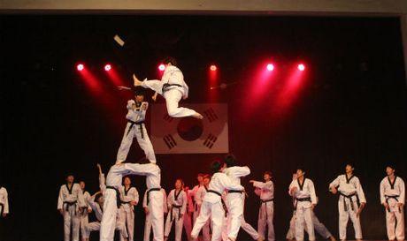 Thu vi khi Taekwondo ket hop voi Kpop - Anh 1