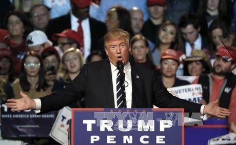 Ong Trump bi mat bat tay Nga-Tho tan cong IS tai Syria, Iraq? - Anh 1