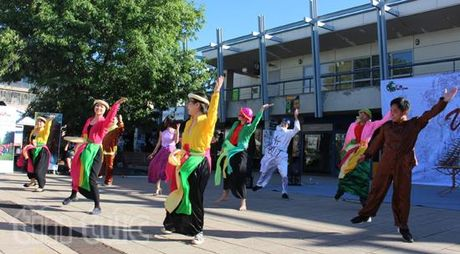 Soi dong le hoi van hoa Viet Nam tai Canberra, Australia - Anh 3