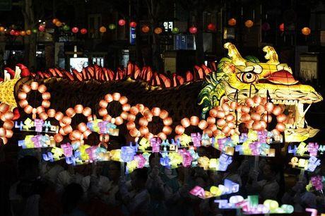 Le hoi den long khong lo Viet - Han 2016 sap dien ra tai Ha Noi - Anh 1