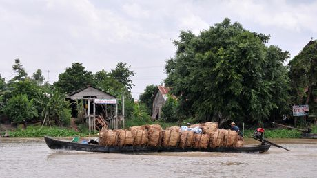 Pho Thu tuong chi dao dieu tra vu buon lau 45.000 bao thuoc la - Anh 1
