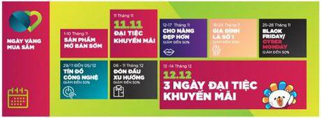 Tung bung khuyen mai mua sam Black Friday 2016 tai Viet Nam - Anh 2