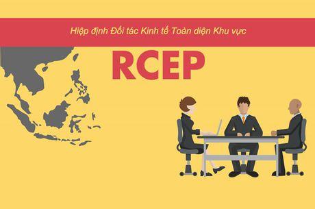 Hiep dinh RCEP la gi ma co the giup moi nguoi quen TPP? - Anh 1