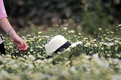 Nam thanh nu tu Ha thanh cuong si cuc hoa mi - Anh 11