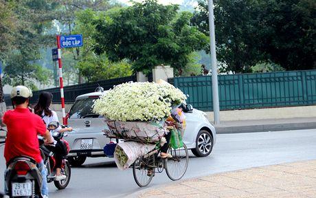 Nam thanh nu tu Ha thanh cuong si cuc hoa mi - Anh 16