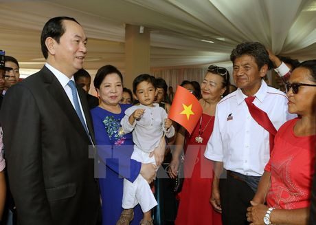 Chu tich nuoc Tran Dai Quang hoi dam voi Tong thong Madagascar - Anh 2