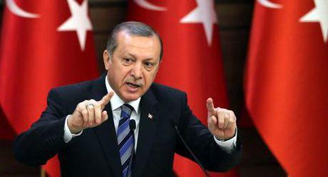 Tho Nhi Ky - EU dang xa nhau hon duoi thoi Erdogan - Anh 1