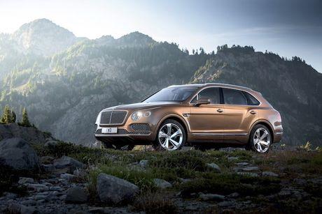 SUV nhanh nhat the gioi - Bentley Bentayga 'dinh an' trieu hoi - Anh 1