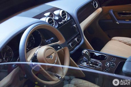 SUV nhanh nhat the gioi - Bentley Bentayga 'dinh an' trieu hoi - Anh 2
