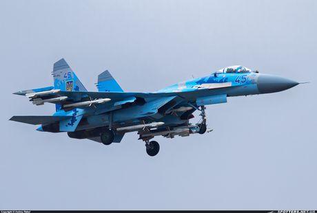 Qua ham the hien, phi cong Su-27 suyt tra gia dat - Anh 3
