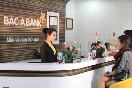 BacABank len ke hoach phat hanh 2.000 ty trai phieu, chi ban thanh cong 25% - Anh 1