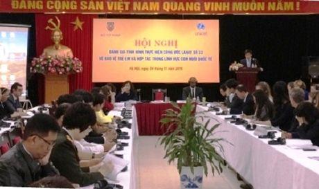 5 nam, 1.771 tre em Viet duoc tao dieu kien lam con nuoi nuoc ngoai - Anh 1