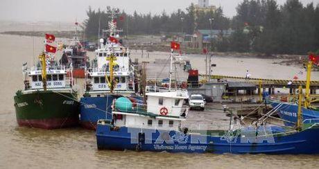 Quang Tri ban giao 3 tau vo thep cho ngu dan - Anh 1