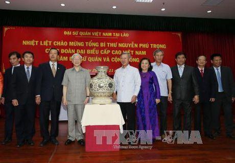 Tong Bi thu tham Dai su quan, dai dien cong dong Viet Nam tai Lao - Anh 2