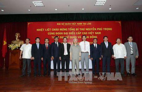 Tong Bi thu tham Dai su quan, dai dien cong dong Viet Nam tai Lao - Anh 3