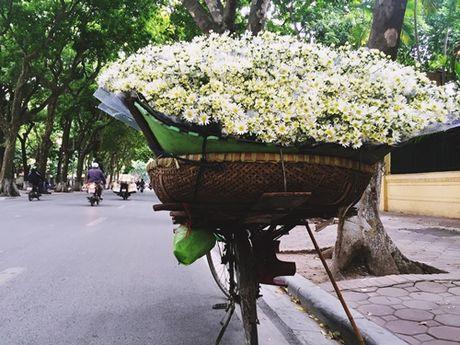 Nang 'lo lem' cuc hoa mi hoa 'nu hoang' noi pho thi - Anh 5