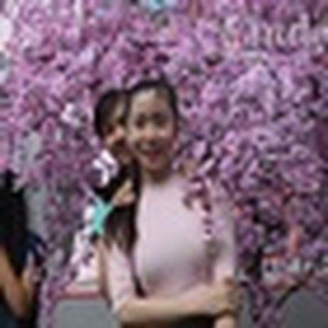 Ron rang nhung le hoi hoa dang mong cho trong thoi gian toi - Anh 2