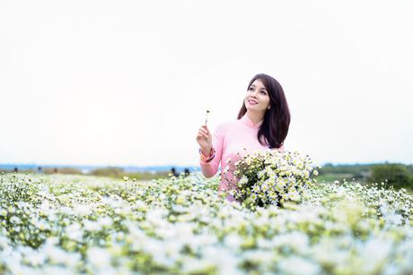 Mai Thu Huyen dep diu dang giua vuon cuc hoa mi trang - Anh 1